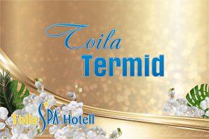Toila termid